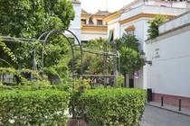 Terraza Plaza de Santa Cruz