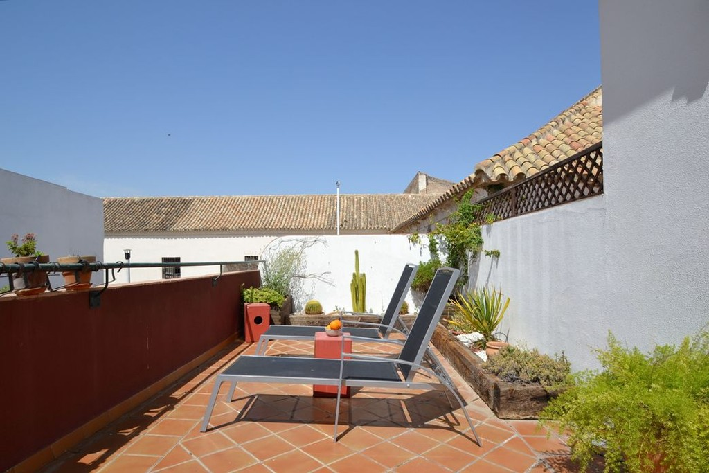 Holiday rental apartment in Alameda Seville with terrace